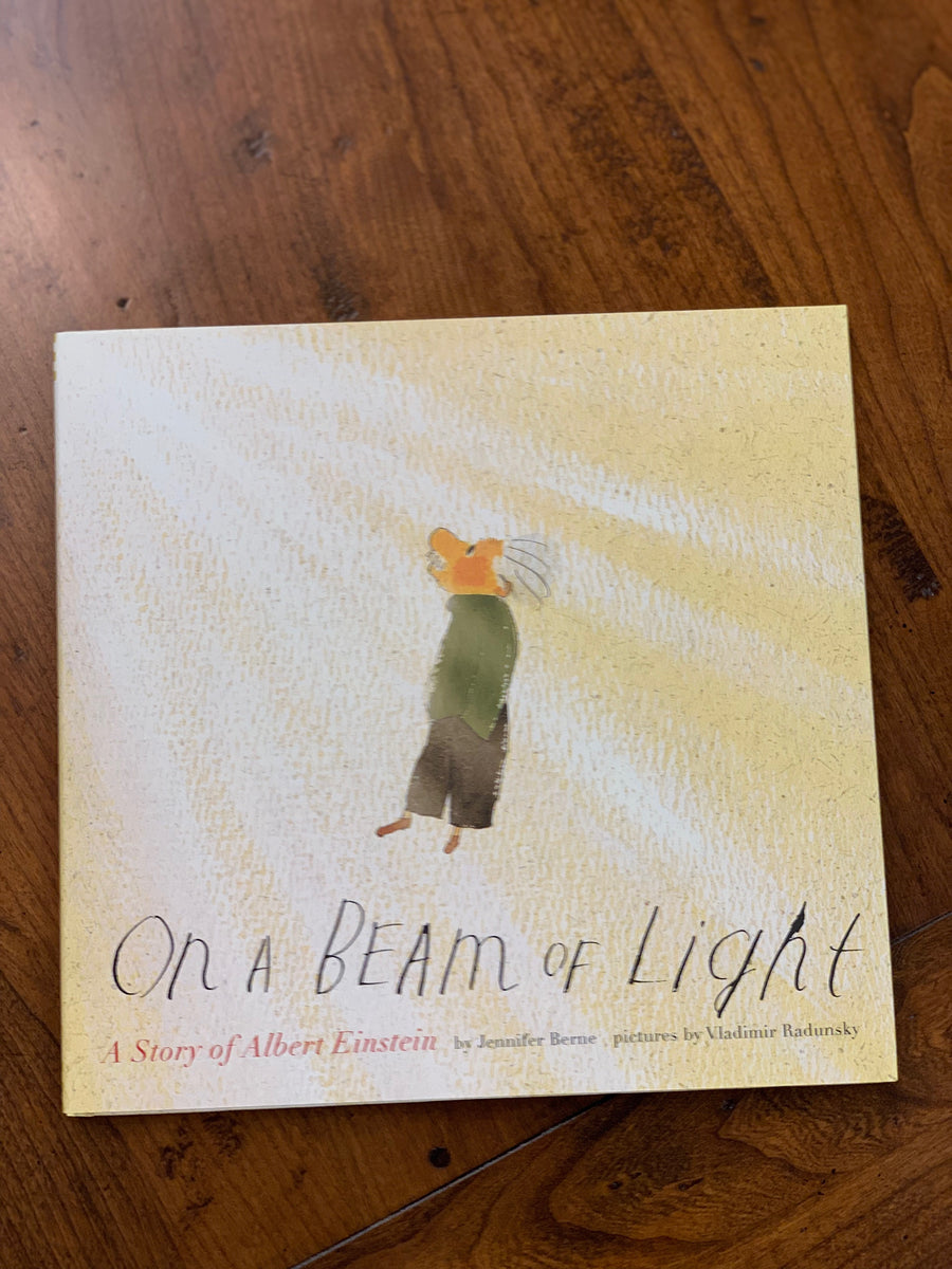 On A Beam Of Light Hardcover