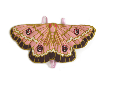 Butterfly Pink Butterfly Wings