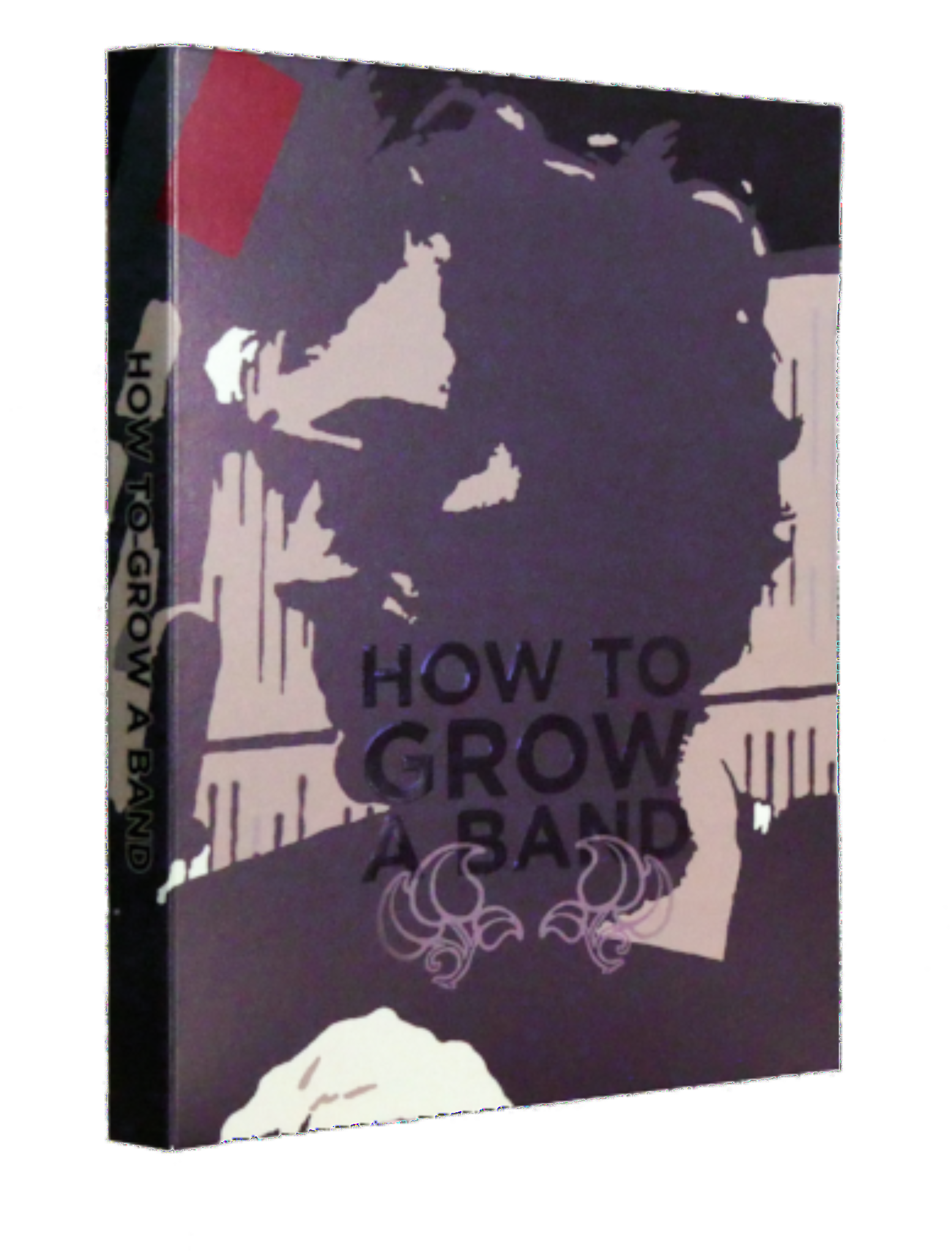 How To Grow A Band DVD and BluRay