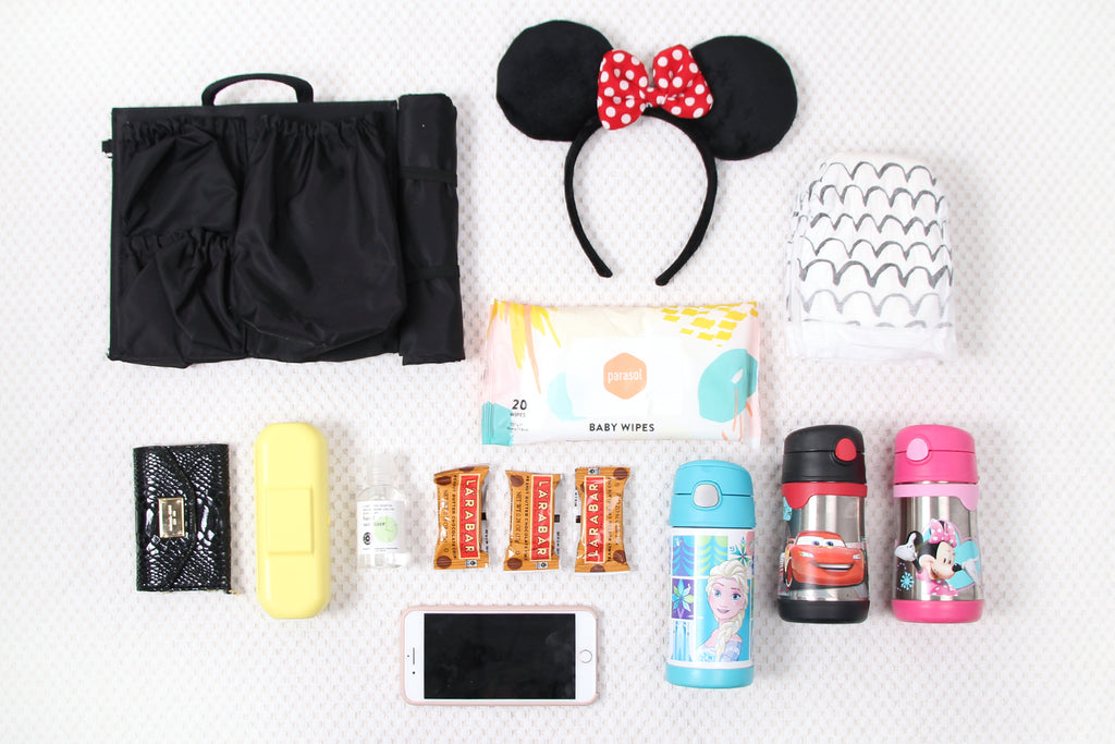 disneyland and ToteSavvy