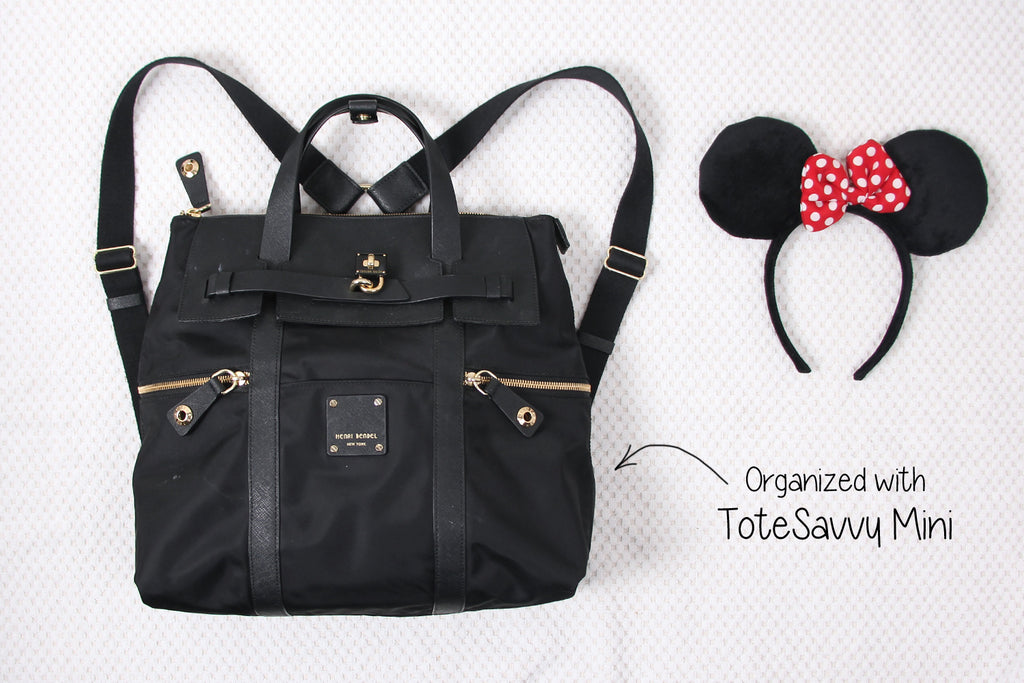 backpack organizer for disneyland