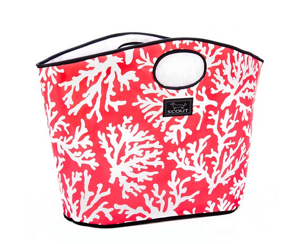 carry all beach tote