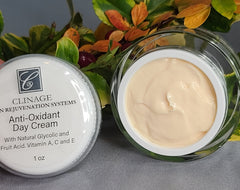 Antioxidant Day Cream