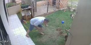 Guy Blows Up His Lawn Trying To Kill Cockroaches