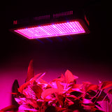 2pcs/lot 600W LED Grow Lights Full Spectrum SMD5730 Plant Lamp for Tent Aquarium Indoor Hydroponics Flowers Plants