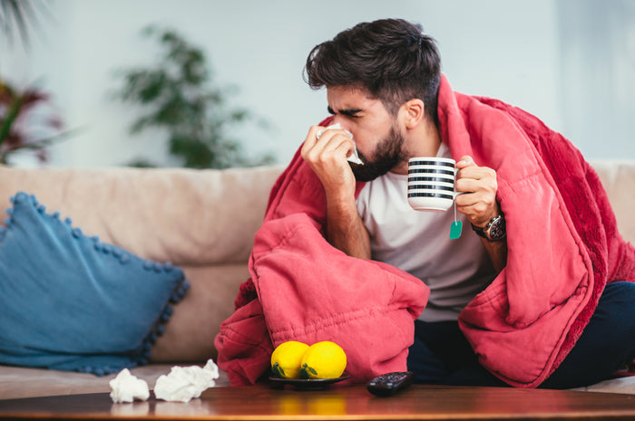 The Best Adaptogenic Herbs to Help You Fight Off The Cold & Flu