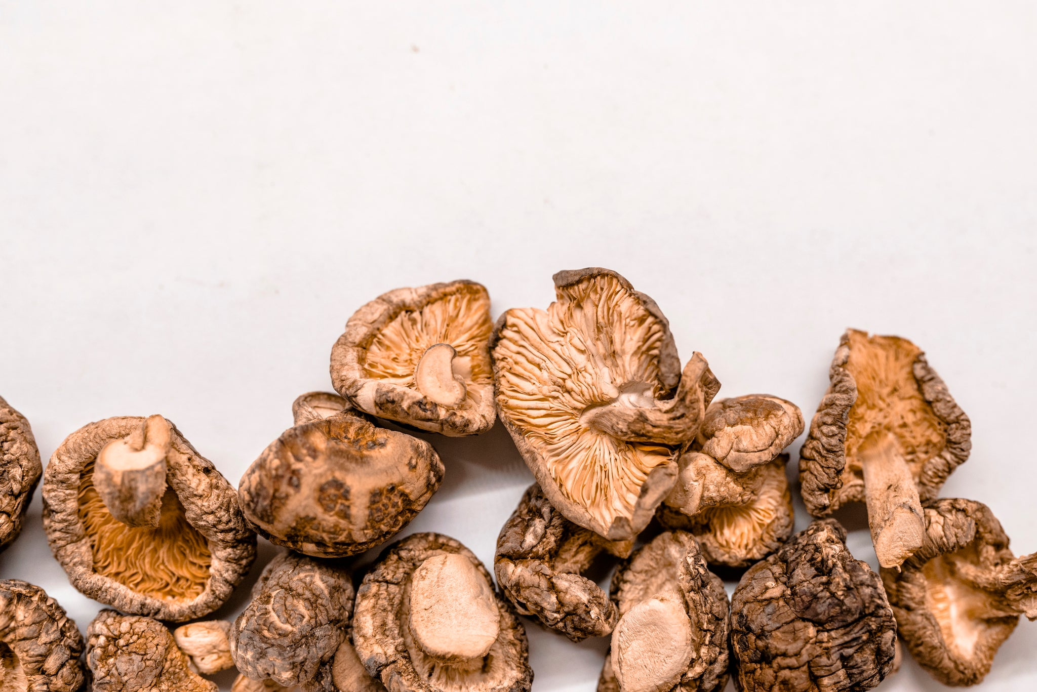 3 Reasons Why You Should be Enjoying Medicinal Mushrooms This Year
