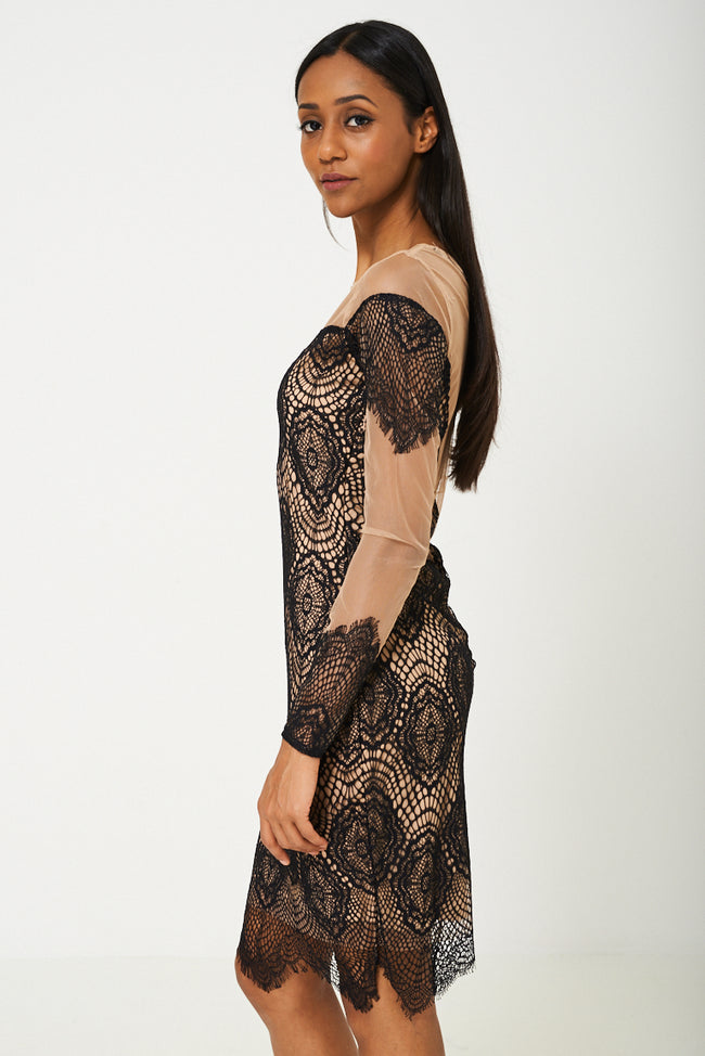 BIK BOK Mesh Dress in Black Lace-Fabulous Bargains Galore