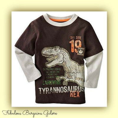 Long Sleeved Dinosaur Print Boys Top-Fabulous Bargains Galore