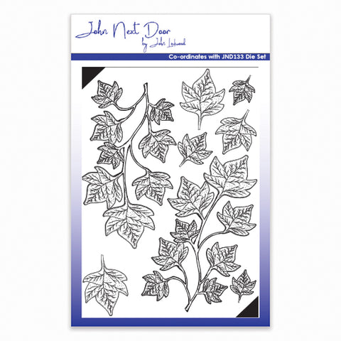Shaded Ivy John Next Door Clear Stamp By John Lockwood JND134