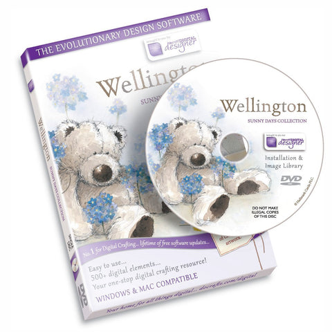Wellington Bear Sunny Days Template Craft Computer Design Software Cd-Rom Dvd by Docraft