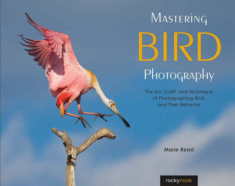 Rocky Nook Mastering Bird Photography