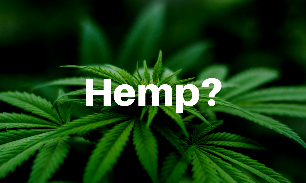 What is Hemp?