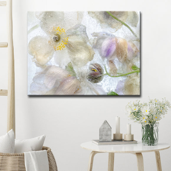 Ready2HangArt 'Anemone Frost' Canvas Wall Décor