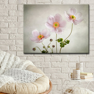 Ready2HangArt 'Anemones' Canvas Wall Décor
