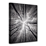 Ready2HangArt 'Ceiling' Wrapped Canvas Wall Décor