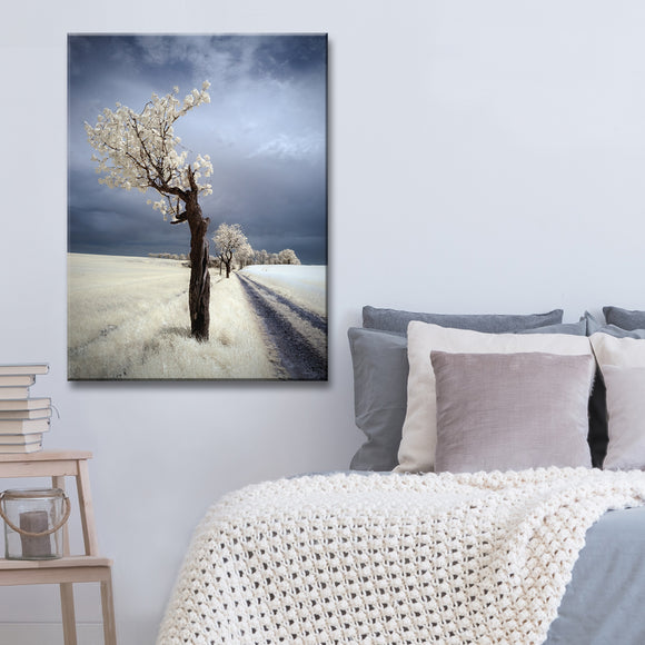 Ready2HangArt 'IRenka' Canvas Wall Décor