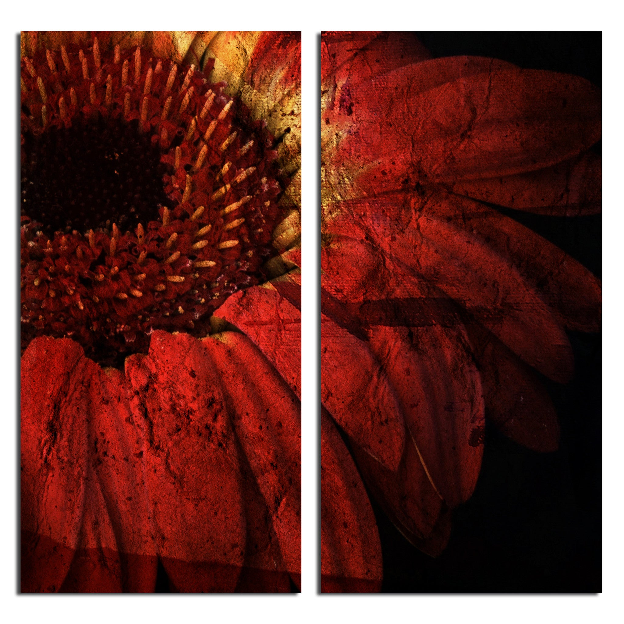 Ready2HangArt 'Gerber Daisy' 2-piece Oversized Abstract Canvas Wall Art