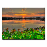 Ready2HangArt 'Beauty at Rest' Canvas Wall Décor by Adam Byerly