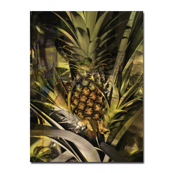 Ready2HangArt 'Pineapple Abstraction' Canvas Wall Art