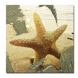 Ready2HangArt 'Star Struck' Canvas Wall Art