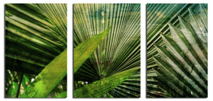 Ready2HangArt 'Green Palm' Oversized Canvas Wall Art (3-piece)