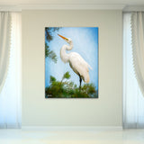 Bruce Bain 'Egret 2' 40x30 inch Canvas Wall Art