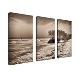 Bruce Bain 'Honeymoon Island' 24x36 inch Canvas Wall Art (3-Pc set)