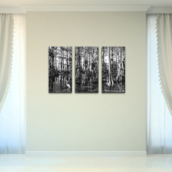 Bruce Bain 'Cypress Swamp' 24x36 inch Canvas Wall Art (3-Pc set)