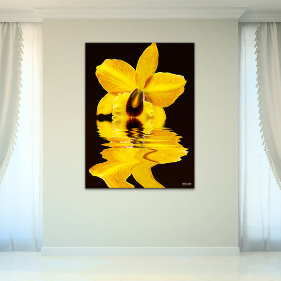 Bruce Bain 'Yellow Orchid' 40x30 inch Canvas Wall Art