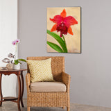 Bruce Bain 'Red Orchid' 24x18 inch Canvas Wall Art