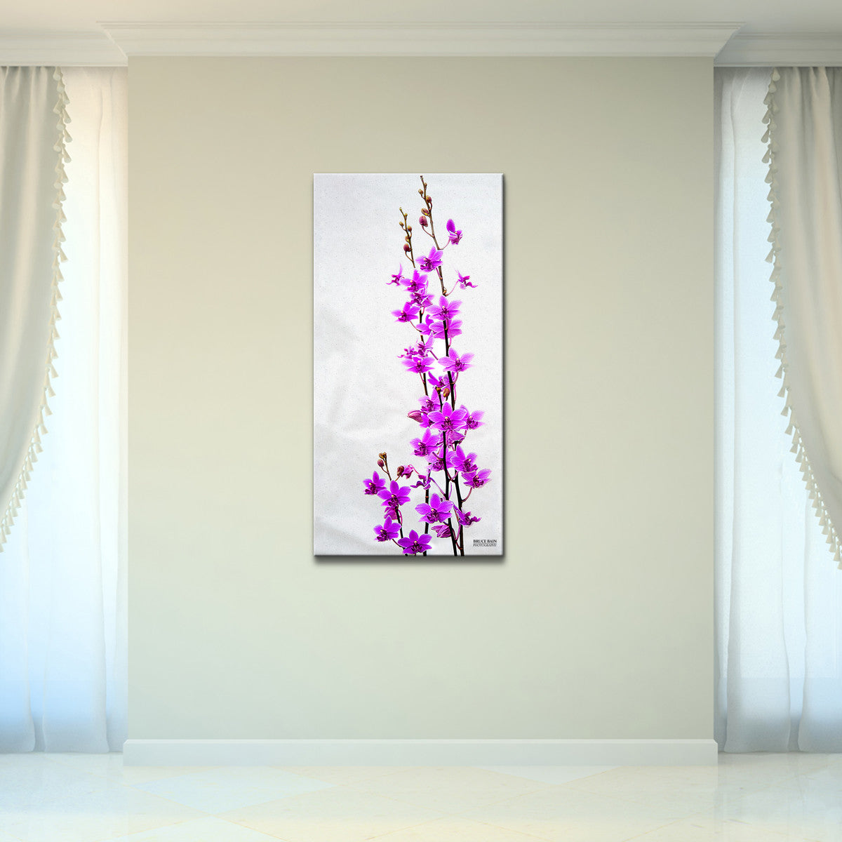 Bruce Bain 'Purple Orchid' 40x20 inch Canvas Wall Art