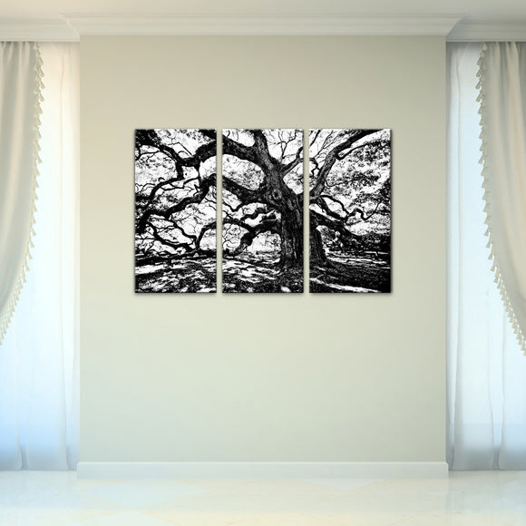 Bruce Bain 'Oak' 24x36 inch Canvas Wall Art (3-Pc set)