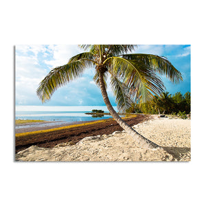 Bruce Bain 'Beach Palm II' Canvas Wall Art