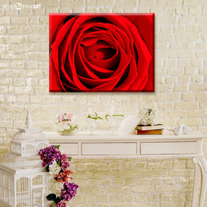 Ready2HangArt Bruce Bain 'Abstract Rose Rouge' Canvas Art