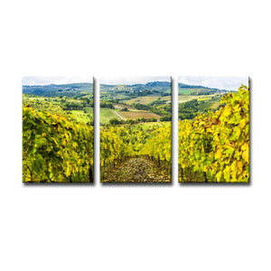 Ready2HangArt Bruce Bain 'Tuscan Landscape IV' Photographic 3-PC Canvas Art Set