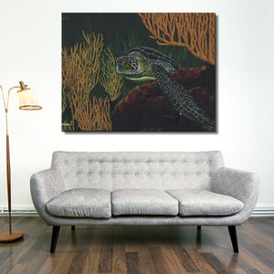 David Dunleavy 'Black Sea Turtle' Canvas Wall Art