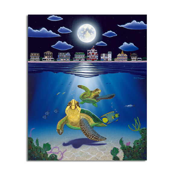 David Dunleavy 'Turtle Drive' Canvas Wall Art