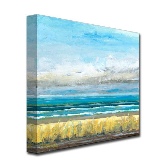 'Clearsky' Ready2HangArt Canvas by Dana McMillan
