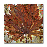 Ready2HangArt 'Fall Ink VII' Canvas Wall Art
