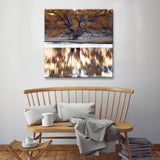 Ready2HangArt™ 'Bosque Lake' by Bartlett Hayes Canvas Art