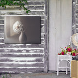 Ready2HangArt Indoor/Outdoor Wall Décor 'Window Light' in ArtPlexi