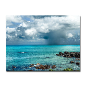 'Dark Paradise' Wrapped Canvas Wall Art