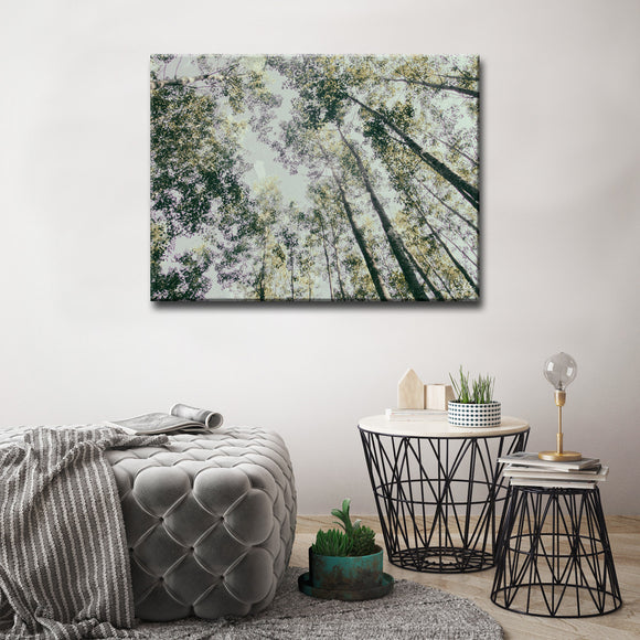 Ready2HangArt 'Shaking Your Tree' Canvas Art Print