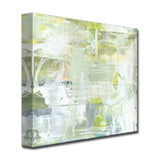 'Lilly Pads & Moss' Wrapped Canvas Abstract Wall Art