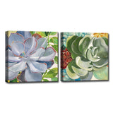 Ready2HangArt™ 'Brilliant Succulents III/IV' by Norman Wyatt Jr. Canvas Art Set