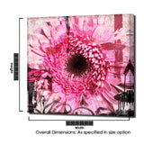 Ready2HangArt 'Painted Petals CII' Canvas Art