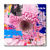 Ready2HangArt 'Painted Petals LXXV' Canvas Art