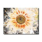Ready2HangArt 'Painted Petals XC' Canvas Art