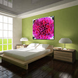 Ready2HangArt 'Painted Petals XCIII' Canvas Art